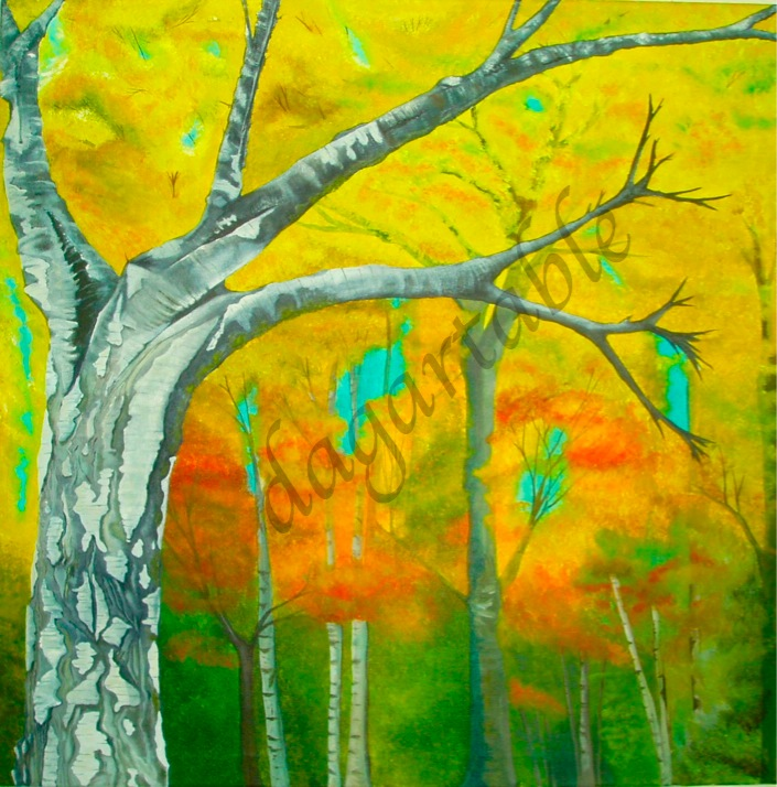 Birch Seasons